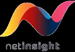 Net Insight -logo